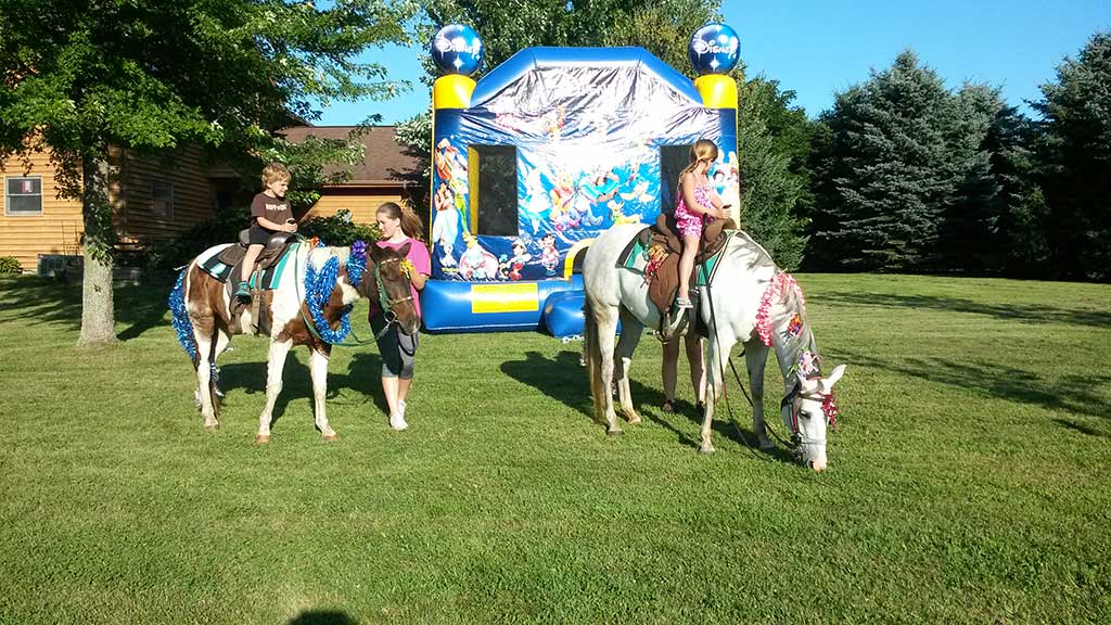 MampM Pony Rides Wisconsin Birthday Party Ideas Louisiana